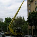 Dacharbeiten abgesichert